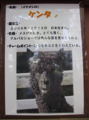写真 1 (4).JPGのサムネイル画像