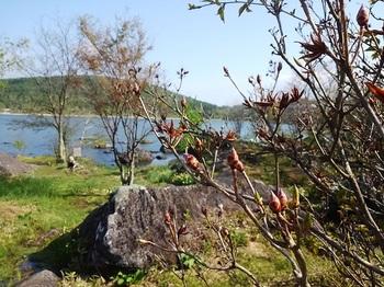 白樺湖0518.JPG