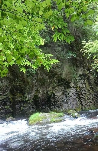 0831岩壁.JPG