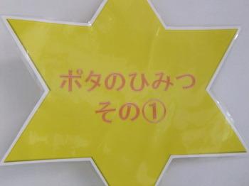 DSCF8005.JPG
