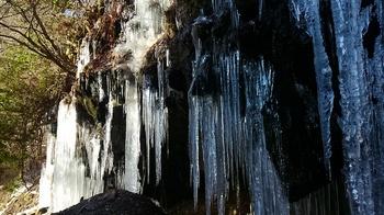 0117 川沿い氷柱.JPG