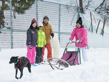 0125 犬ぞり.jpg