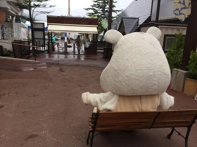 0821_ポタ後ろ.JPG